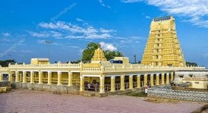 2 Days Mysore & Iruppu Falls Nagarhole Sightseeing Tour By Car