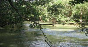 3 Days Bangalore To Coorg Iruppu Falls Nagarhole Sightseeing